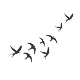 Ласточки прилетели