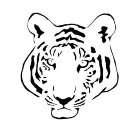 Тигон