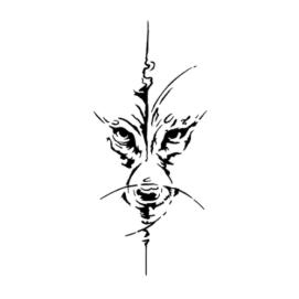 Койот